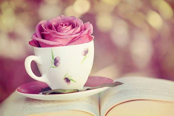 Стихотворение, после которого хочется кардинально изменить свою жизнь
