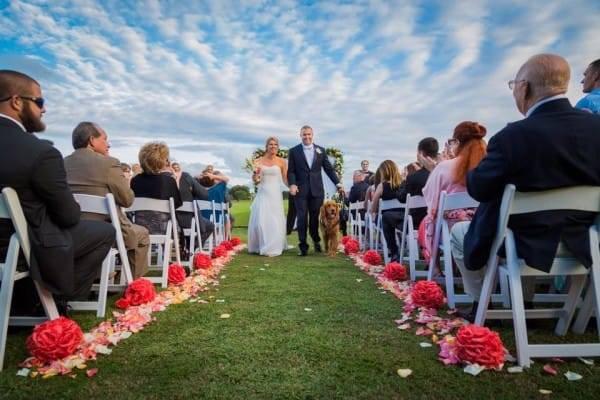 На первый взгляд это самая обычная свадьба. Но только пока вы не увидите свидетеля рядом с женихом