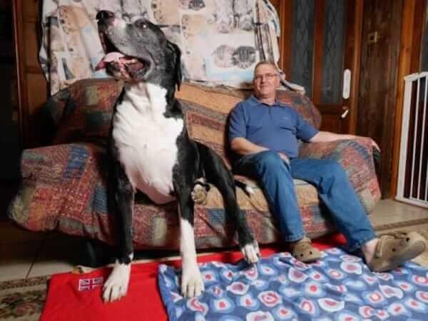Она несколько лет уговаривала своего мужа завести маленькую собачку. Наконец-то, муж сдался и в доме появился щенок! Прошёл год...