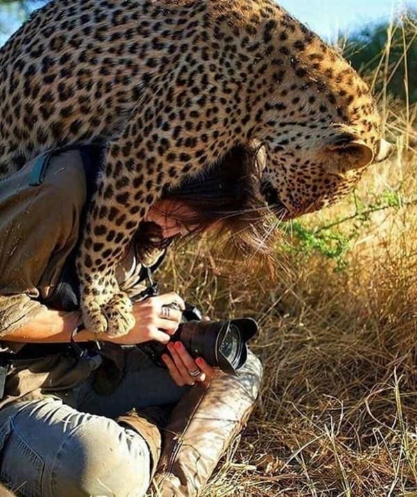 20 фотографий, доказывающих, что, если красота не спасёт мир, это сделают животные