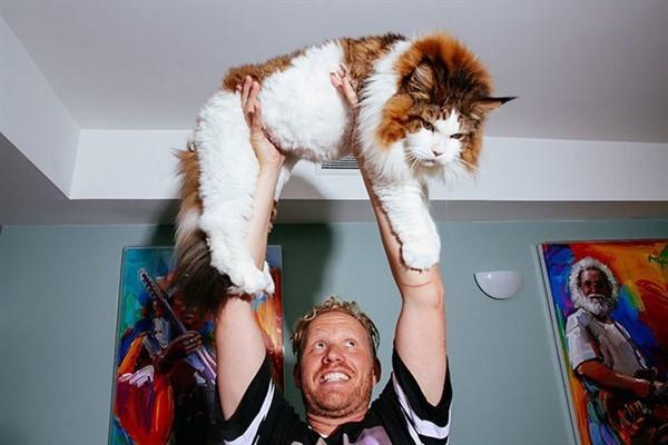 Такого кота вы ещё не видели! Вот это котяра!