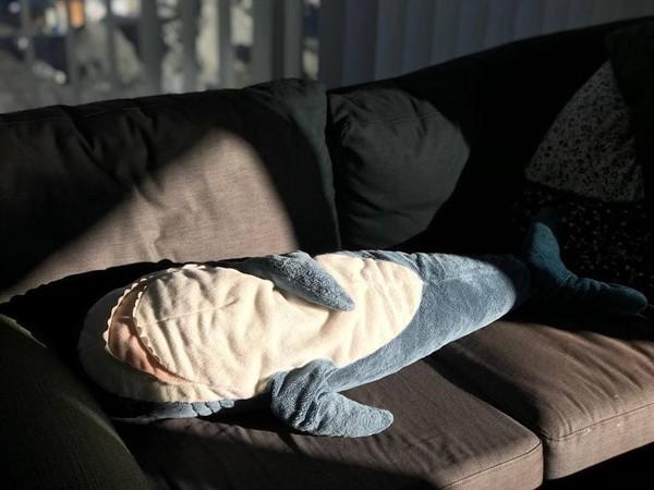 Эти плюшевые акулы из Икеи заполонили интернет. А всё потому что они живут на всю катушку!