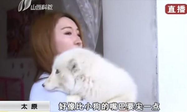 Китаянка думала, что купила щенка, но поняла, что что-то не так, когда он напугал всех местных собак