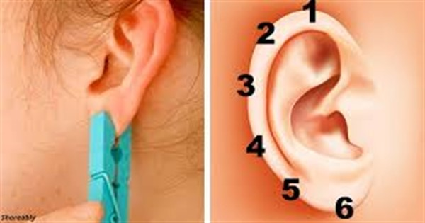 Зажмите ухо прищепкой на 20 секунд. Посмотрите как это влияет на организм.