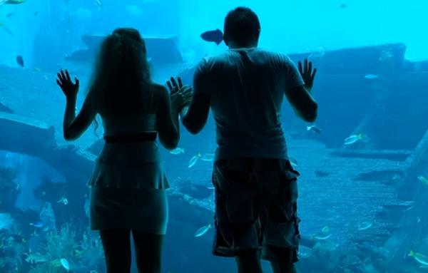 Один из самых больших океанариумов на Земле – это настоящее чудо!