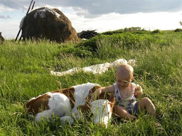 «К бабушке в деревню отвезли на лето» — замечательный стих!